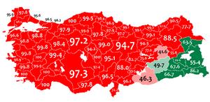 1965 Turkish census - Image: Mother language in 1965 Turkey census Turkish and Kurdish