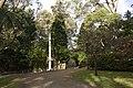 Mount Wilson NSW 2786, Australia - panoramio (69).jpg