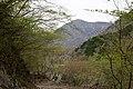 Mt.Hirugatake 32.jpg