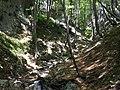 Mudna dol - panoramio (11).jpg