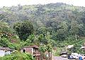 Munnar - views from Munnar (1).jpg