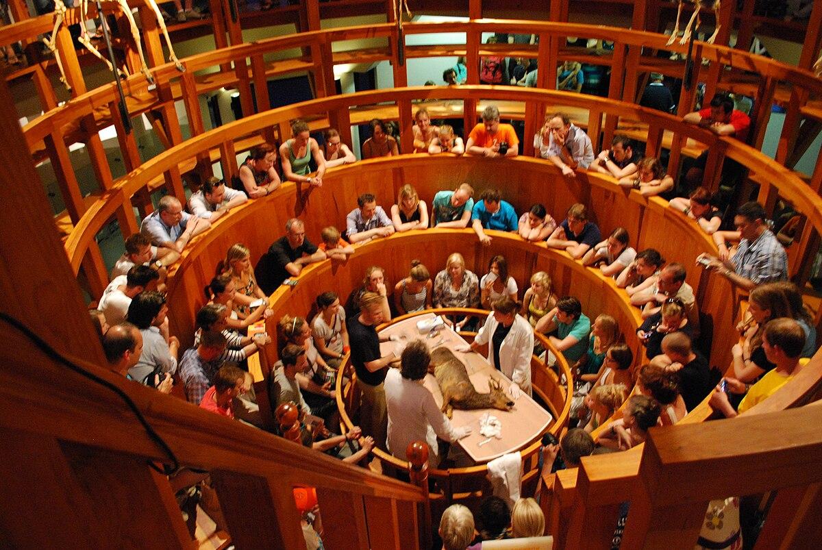 Anatomisches Theater – Wikipedia