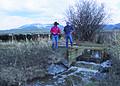 NRCSMT01064 - Montana (4975)(NRCS Photo Gallery).jpg
