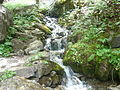 Nacionalen park Mavrovo (33).JPG