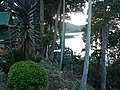 Nambucca Heads - panoramio.jpg