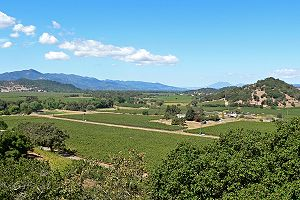 Napa Valley looking northwest