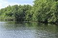 Nationaal Park Weerribben-Wieden. Waterwegen in de weerribben 01.JPG