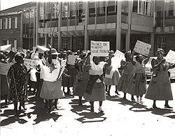 National Women's Day.jpg