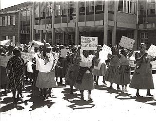 Feminism in South Africa