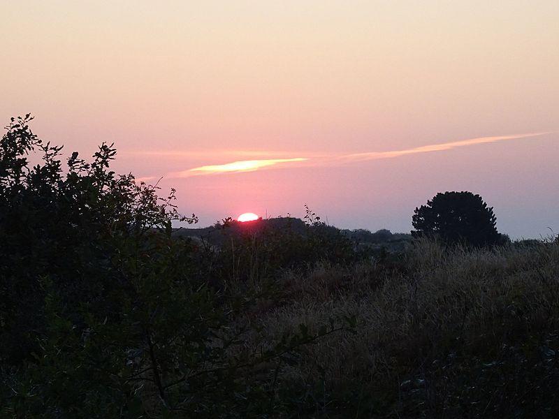 File:Nationalpark Niedersächsisches Wattenmeer - Spiekeroog - Morgenstimmung (10).jpg