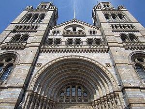 Natural History Museum, London (2014) - 4.JPG