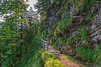 Naturschutzgebiet Belchen - Belchen Bild 5.jpg