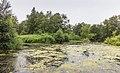 Natuurgebied De Kraanlânnen van It Fryske Gea. 18-07-2019. (actm.). 09.jpg