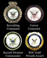 Navy Recruiting Badges.png