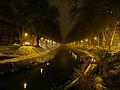 Neige 2013 Toulouse - Canal de Brienne.jpg