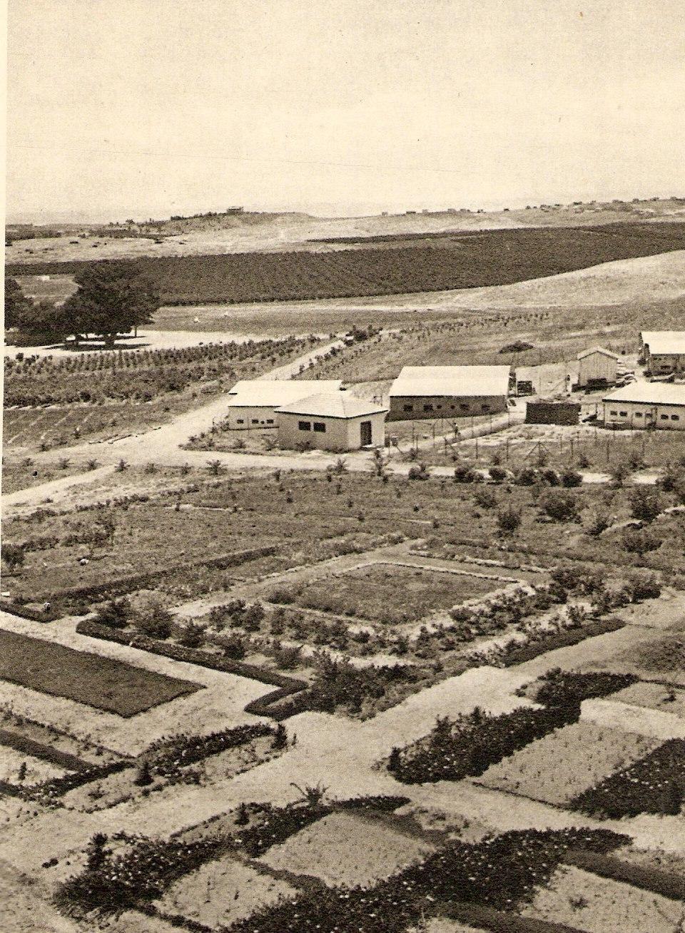 Ness Zionah 1934