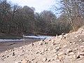 Neuer See - Bärensee 2009 - panoramio.jpg