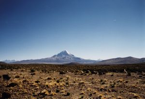 Cordillera Occidental (Central Andes) - Nevado Sajama.