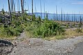 Nine Mile Trailhead (51568516-daec-49ec-8e03-0dcdf66e0c3f).jpg