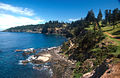 Norfolk Island Rocky Point.jpg