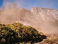 North wildfire, Sequoia and Kings Canyon National Parks, summer 2004 (d862e990-2885-48e9-8644-068bac10cc63).jpg