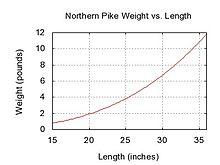 Northern pike - Wikipedia