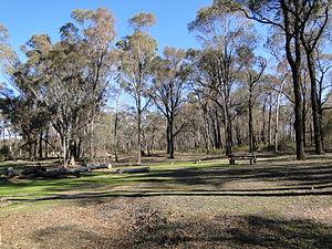 Greater Bendigo National Park - Notley camping area, Greater Bendigo National Park.