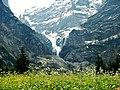Oberer Grindelwaldgletscher - panoramio (1).jpg
