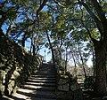 Okazaki catsle - 岡崎城 - panoramio (4).jpg