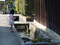 Old Kishi-House Nishiwaki,Hyogo,Japan 旧来住家住宅(来住梅吉旧邸)DSCF9582.JPG