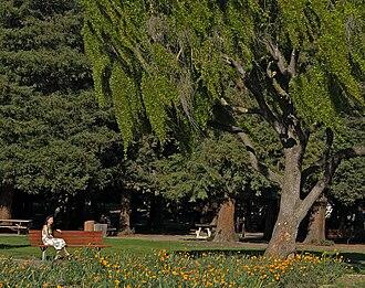 Overfelt Gardens - Overfelt Gardens