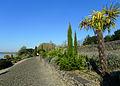 P1320083 49 Ste Gemme sur Loire jardin méditerranéen rwk.jpg