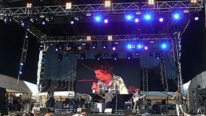 POND at 2014 Southbound festival.JPG
