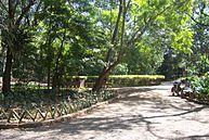 Vista do Parque (3)