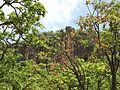 Pachmarhi hill view.jpg