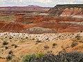 Painted Desert Arizona5.jpg