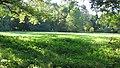 Parc Dendrologic - Arcalia (1425001322).jpg