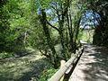 Parc des Rives du Loup.jpg