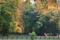 Park Sołacki w Poznaniu, plac zabaw - 7594.jpg