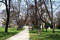 Park in Frankfurt (Oder) (4531914953).jpg