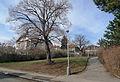 Park v Mrštíkově ulici v Praze 10 5.JPG