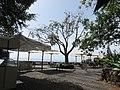 Parque de Santa Catarina, Funchal - 2020-09-08 - IMG 8656.jpg