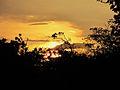 Parque nacional Aguaro-Guariquito 007.jpg