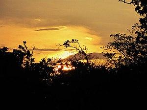 Aguaro-Guariquito National Park - Image: Parque nacional Aguaro Guariquito 007
