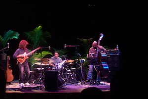 2003 in jazz - Pat Metheny Trio 2003 in Pitsburg.
