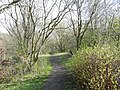 Path along the disused railway, Clifton - geograph.org.uk - 758772.jpg