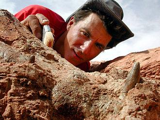 Paul Sereno - Paul Sereno at a dig in 2010.