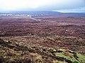 Peat bog - geograph.org.uk - 1183800.jpg