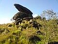 Pedra montada em Poços de Caldas - MG, Brasil - panoramio (22).jpg