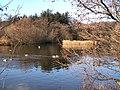 Penrhos Coastal Park - geograph.org.uk - 1716751.jpg